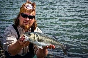 A Dungarvan bass caught on a Fiish Minnow