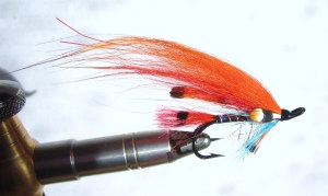 Orange tippet