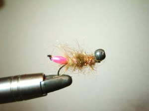 Pink Peeking Caddis